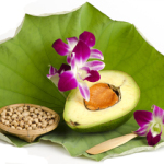 News About Avocado and Soybean Oils for Joint Health